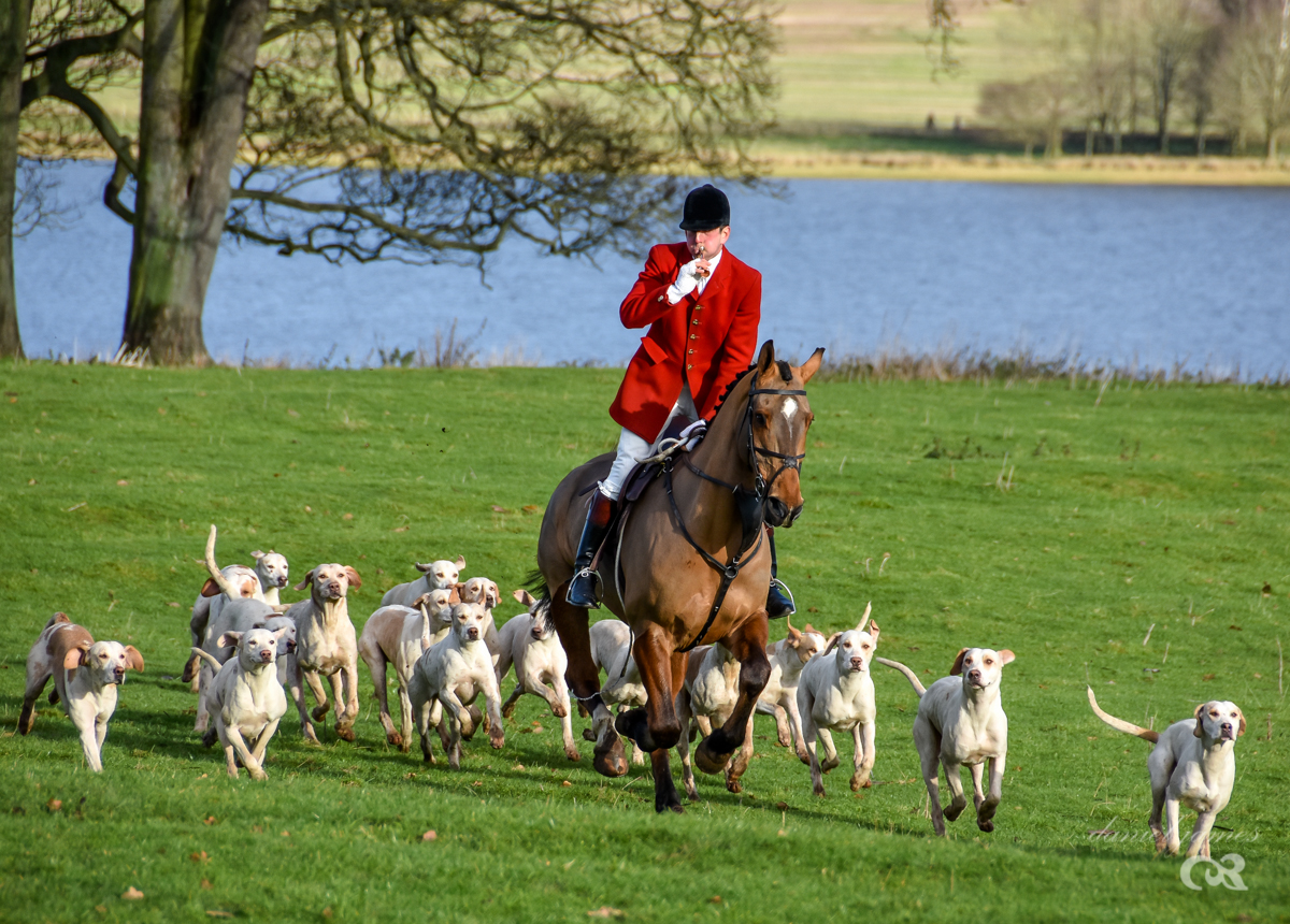 Meynell & South Staffordshire Boxing Day Hunt 2017